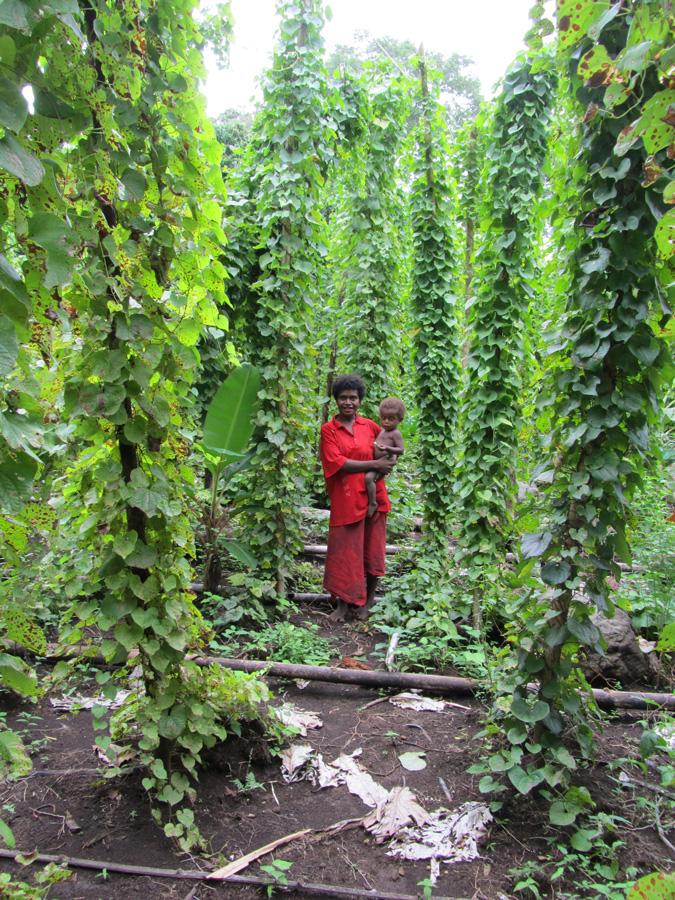 """Frida Kisoangkorofi avec son fils Lionel au milieu des plants de """"mami"""" dans son immense jardin. Tafnamale, village de Balngit. Photo Antje S. Denner, 2011."""