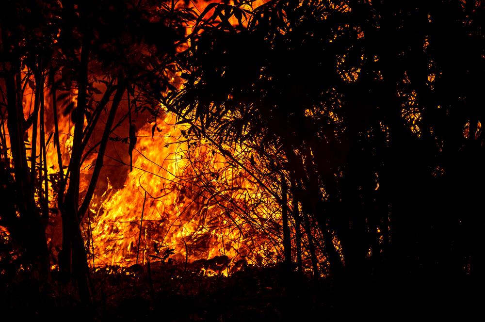 Champ qui brûle le soir. Photo de Timour Claquin Chambugong, 2013.