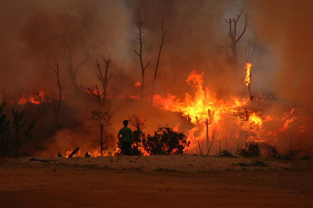 Villageois de Balonggri surveillant la progression du feu qui brûle ses champs. Photo Timour Claquin Chambugong, 2009.