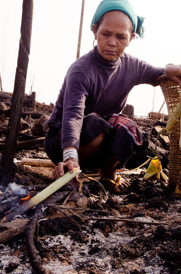Femme Chambugong de Mangdugri surveillant la cuisson de l'œuf dans le tube de bambou. Photo Timour Claquin Chambugong, 2012.