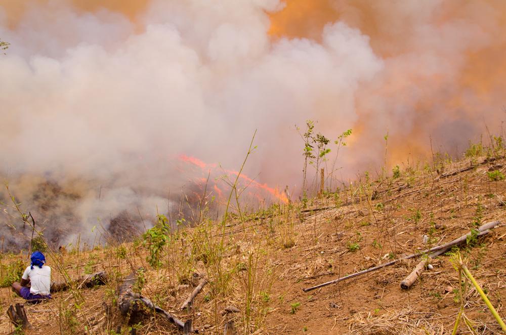 Pongjan Chambugong contemplant la progression des flammes. Photo Timour Claquin Chambugong, 2012.