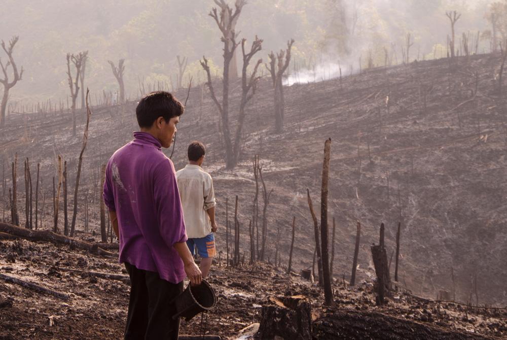 """Mijing regarde le paysage fraîchement brûlé, un panier """"kirang"""" à la main, avant de semer les graines. Photo Timour Claquin Chambugong, 2012."""